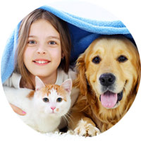 Stainmaster® PetProtect® Carpet: Pet-Friendly Carpet